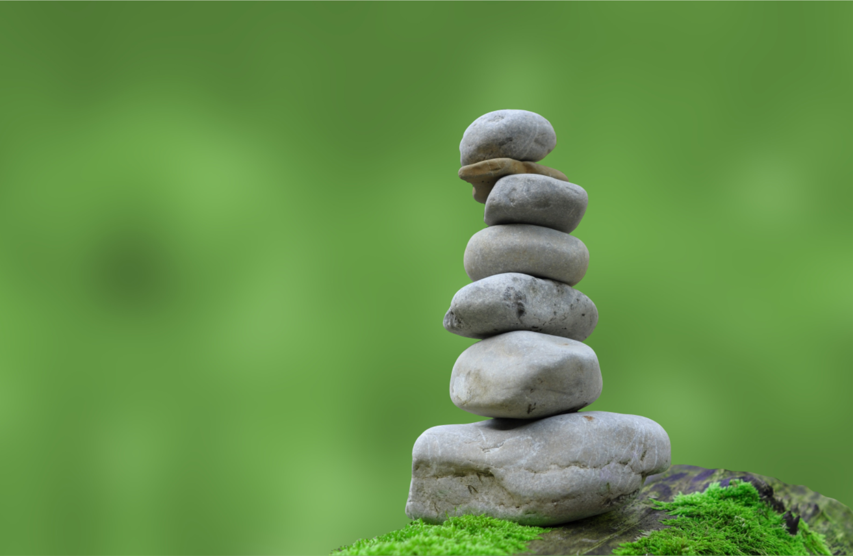 Zen Shabbat Retreat