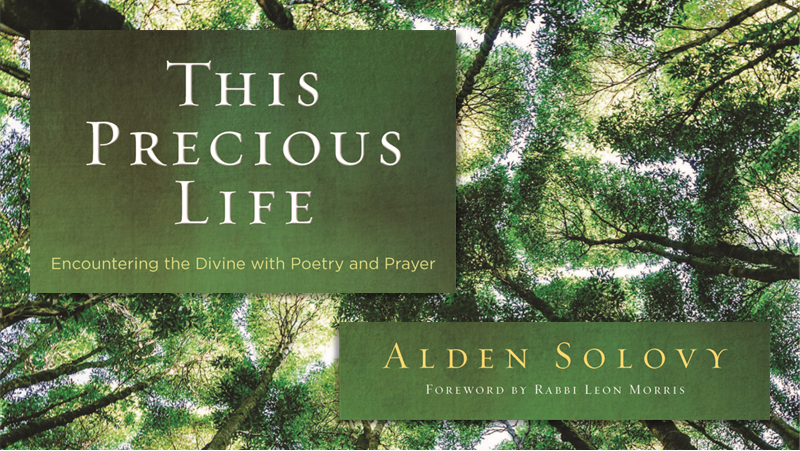 Alden Solovy: This Precious Life Book Reading